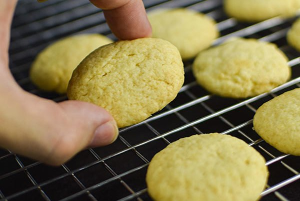 Alchemy Premix Cookies hold by hand